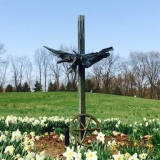 Daffodils in GilChrist public retreat center garden