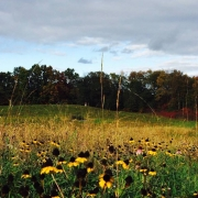 South prairie at GilChrist retreat center in Three Rivers, Michigan